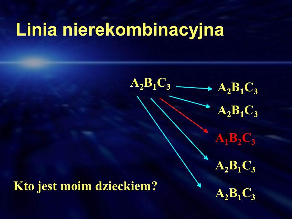 A2B1C3A2B1C3 A2B1C3A2B1C3 A2B1C3A2B1C3 A1B2C3A1B2C3 A2B1C3A2B1C3 A2B1C3A2B1C3 Linia nierekombinacyjna Kto jest moim dzieckiem?