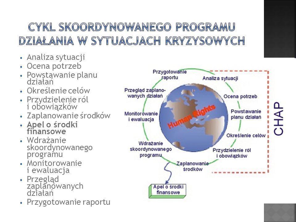 Analiza sytuacji Ocena potrzeb Powstawanie planu działań Określenie celów Przydzielenie ról i obowiązków Zaplanowanie środków Apel o środki finansowe