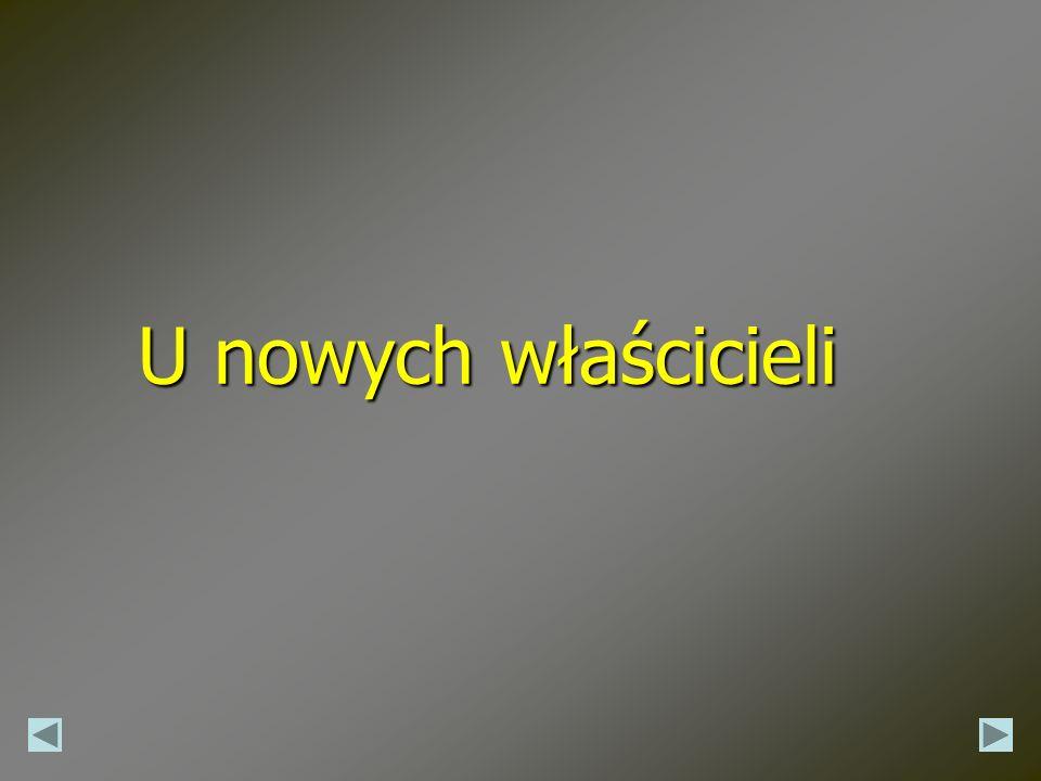 USZCZĘŚLIWIENIE 50 cm x 65 cm 470,00 PLN