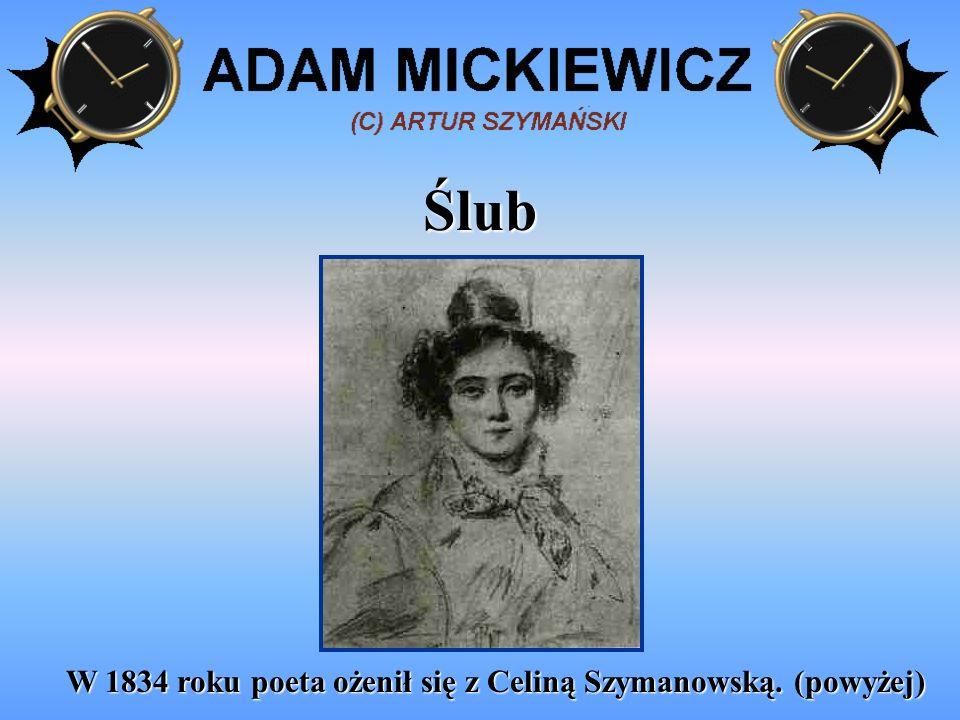Praca w Lozannie Od jesieni 1839 do wiosny 1840 wykładał literaturę łacińską w Lozannie.