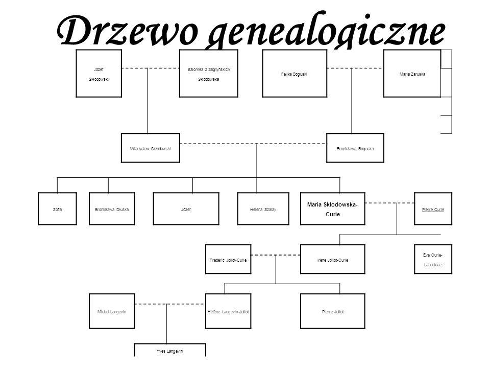 Drzewo genealogiczne Józef Skłodowski Salomea z Sagtyńskich Skłodowska Feliks BoguskiMaria Zaruska Władysław SkłodowskiBronisława Boguska ZofiaBronisł