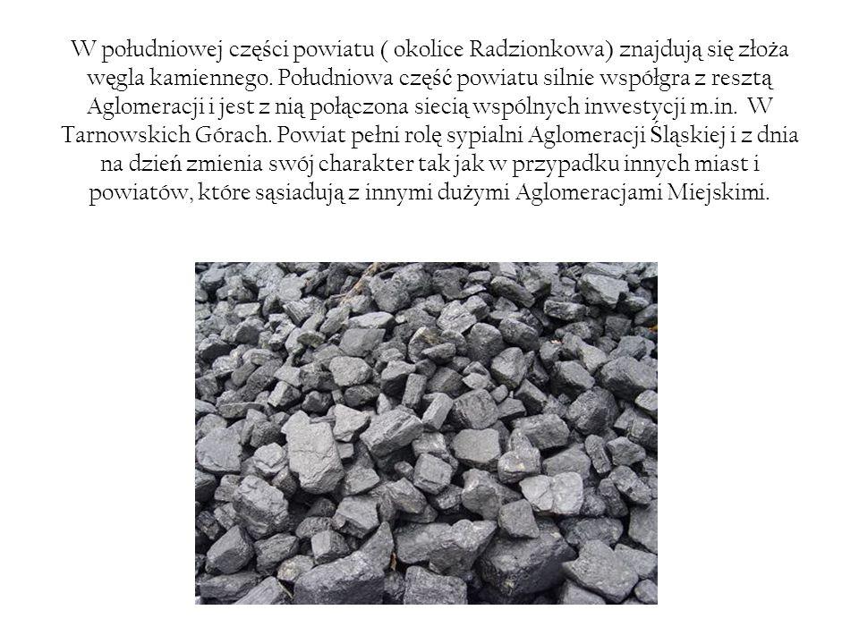 W południowej cz ęś ci powiatu ( okolice Radzionkowa) znajduj ą si ę zło ż a w ę gla kamiennego.