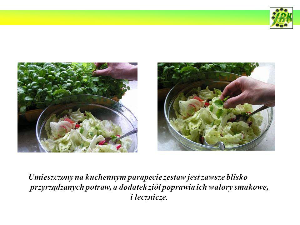 Umieszczony na kuchennym parapecie zestaw jest zawsze blisko przyrządzanych potraw, a dodatek ziół poprawia ich walory smakowe, i lecznicze.