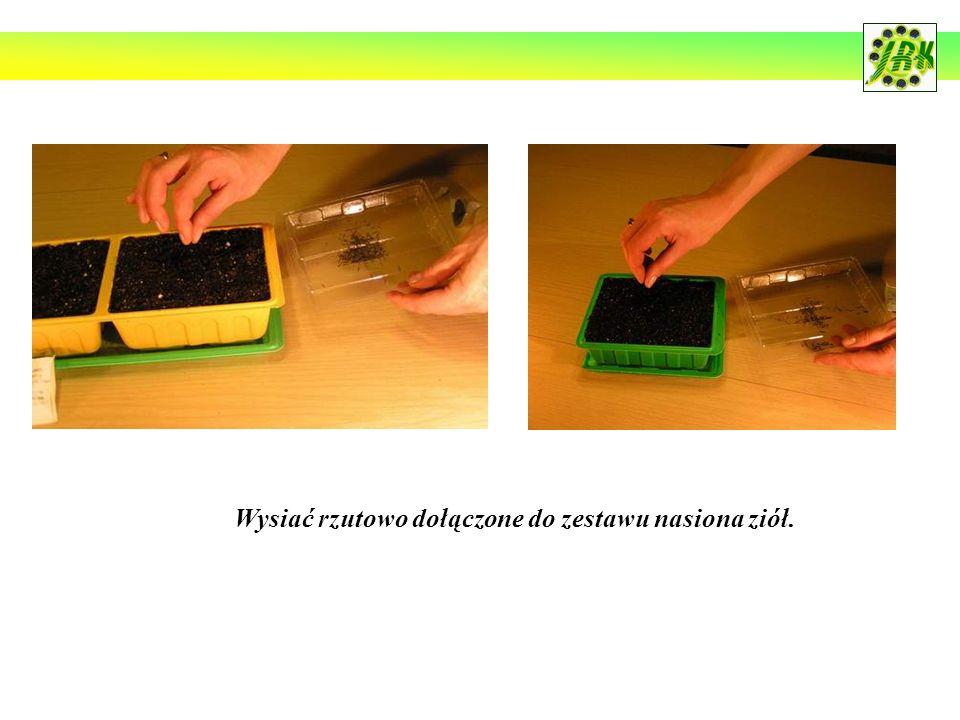 Wysiać rzutowo dołączone do zestawu nasiona ziół.