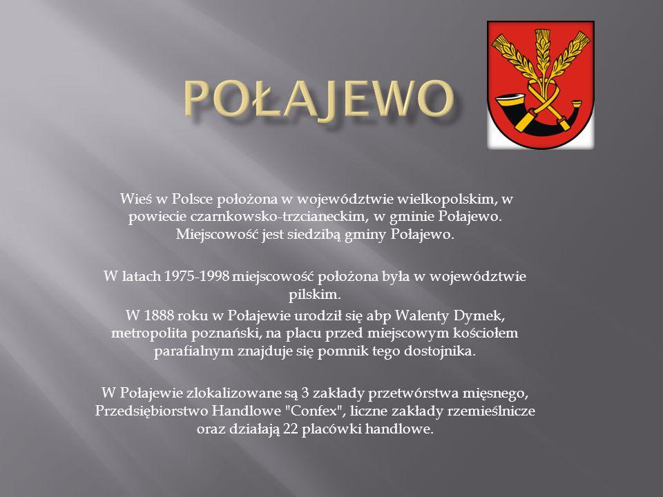Wieś w Polsce położona w województwie wielkopolskim, w powiecie czarnkowsko-trzcianeckim, w gminie Połajewo.