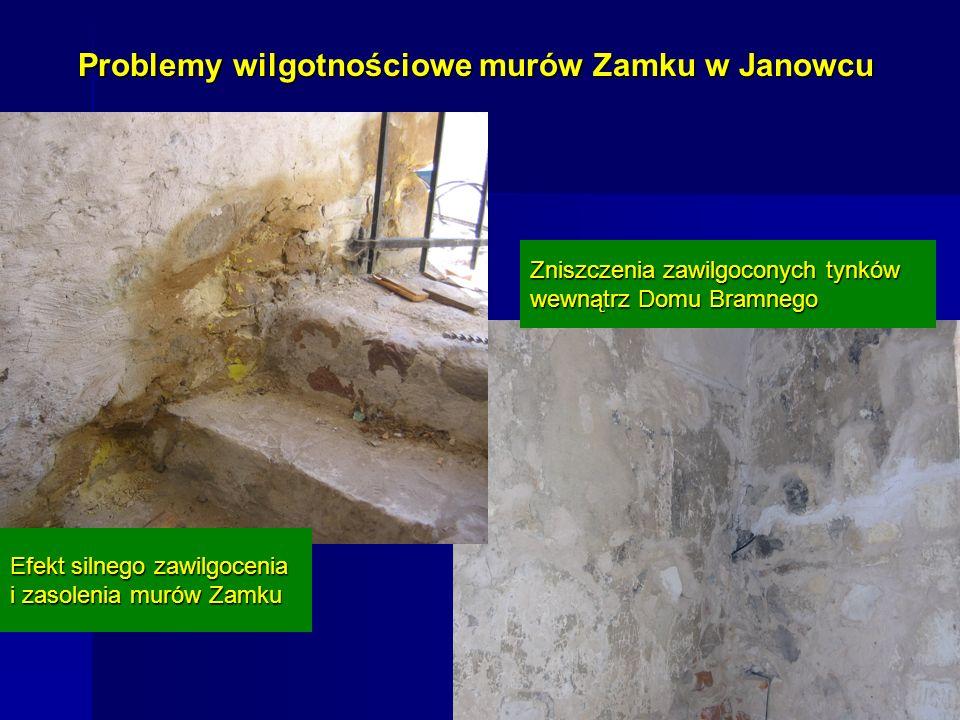 Problemy wilgotnościowe murów Zamku w Janowcu Efekt silnego zawilgocenia i zasolenia murów Zamku Zniszczenia zawilgoconych tynków wewnątrz Domu Bramne