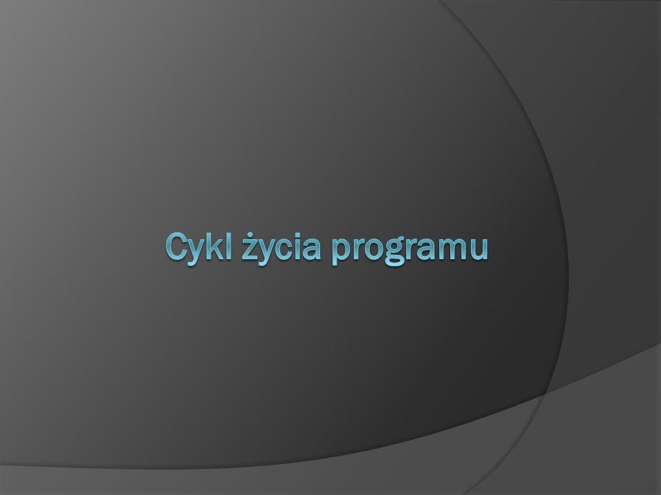Wstęp W całym cyklu działania programu występuje kilka głównych etapów.