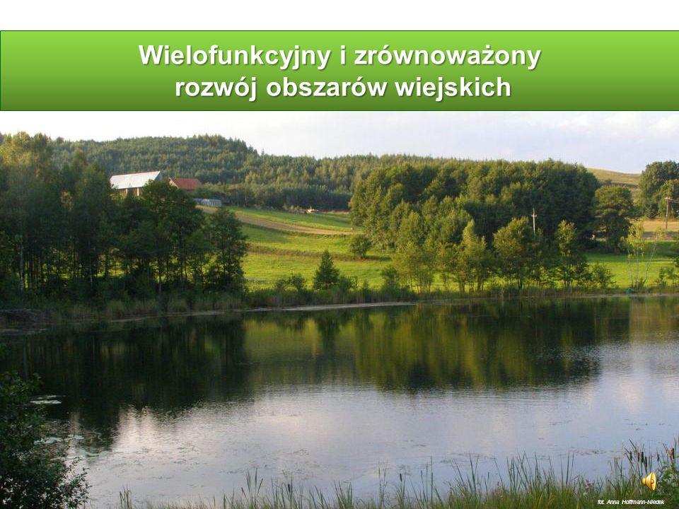 System Jakość i Tradycja (2) Zalety systemu Jakość i Tradycja: motywuje do aktywności gospodarczej pobudza przedsiębiorczość integruje samorządy lokalne, podmioty gospodarcze i społeczne wprowadza nową jakość do produktu turystycznego (oferty turystycznej regionu) i ułatwia promocję regionu (obszaru) http://www.produkty-tradycyjne.pl/specjalne/produkty-wedlug-znakow-jakosci.html