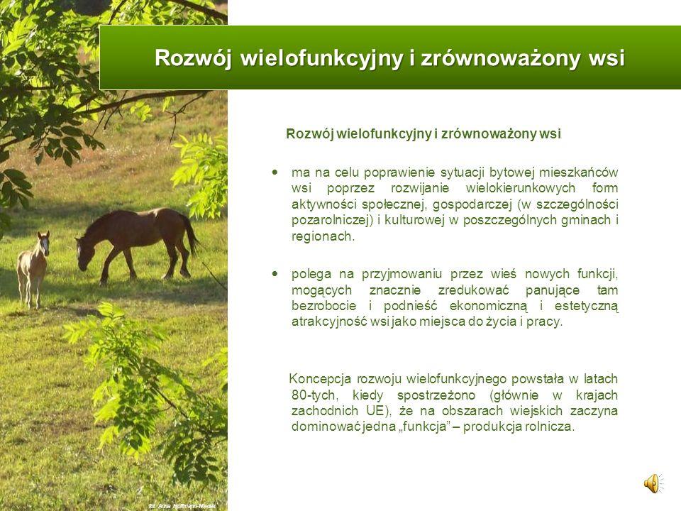 Wielofunkcyjny i zrównoważony rozwój obszarów wiejskich fot. Anna Hoffmann-Niedek
