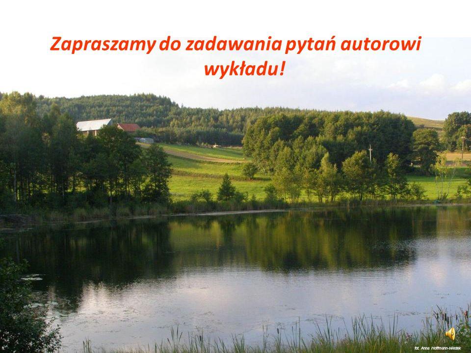 Przyjęcie koncepcji ekorozowju gminy (związku gmin) jako głównego priorytetu i naczelnej zasady lokalnej strategii rozwoju, opracowanie programu wykon
