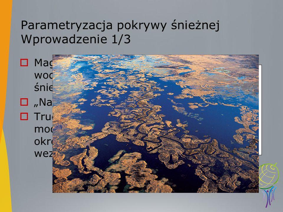 Parametryzacja pokrywy śnieżnej Wprowadzenie 1/3 Magazynownie wody w postaci śniegu Nagłe roztopy Trudne w modelowaniu okresy niżówki- wezbreania
