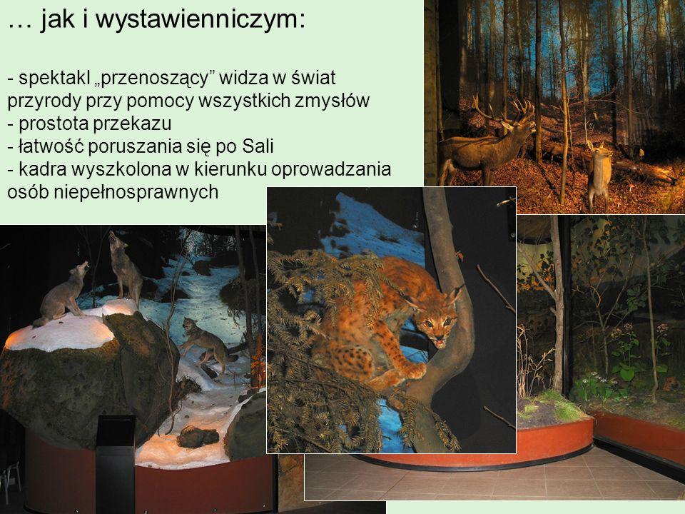 w Ośrodku znajdują się także wystawy utworzone specjalnie z myślą o osobach niepełnosprawnych Wystawa pni drzew prezentuje gatunki drzew znajdujących się na terenie Parku.