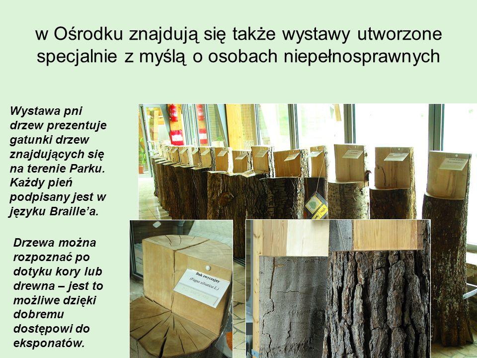 w Ośrodku znajdują się także wystawy utworzone specjalnie z myślą o osobach niepełnosprawnych Wystawa pni drzew prezentuje gatunki drzew znajdujących
