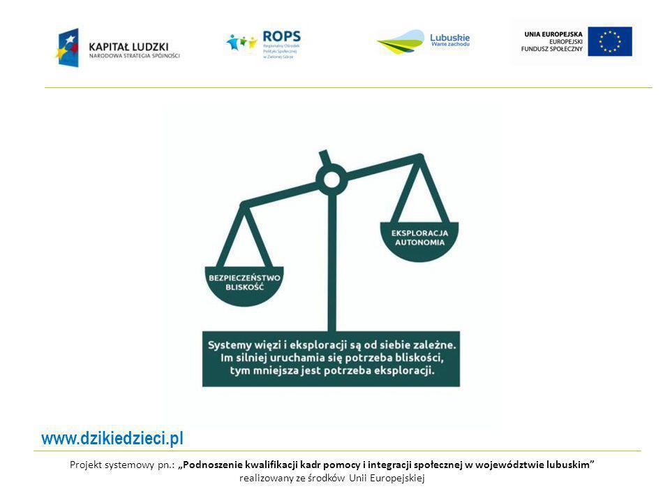 Projekt systemowy pn.: Podnoszenie kwalifikacji kadr pomocy i integracji społecznej w województwie lubuskim realizowany ze środków Unii Europejskiej www.dzikiedzieci.pl