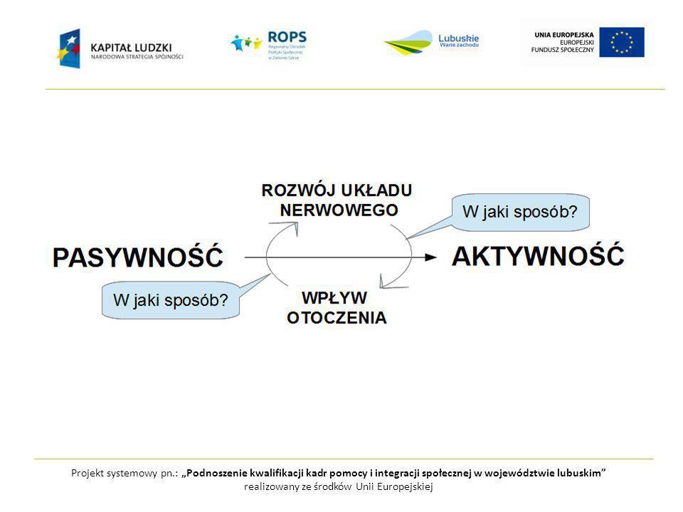 Projekt systemowy pn.: Podnoszenie kwalifikacji kadr pomocy i integracji społecznej w województwie lubuskim realizowany ze środków Unii Europejskiej BEZPIECZEŃSTWOWYZWANIE