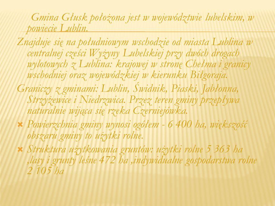 Gmina Głusk sfinansowała budowę nowych dróg m.in.
