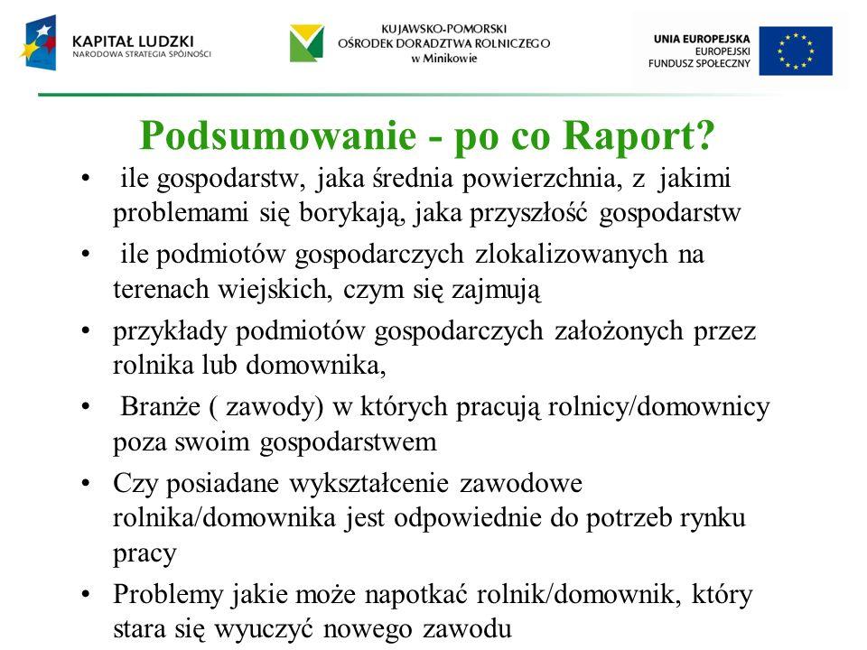 Podsumowanie - po co Raport.