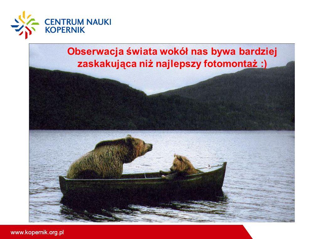 www.kopernik.org.pl Obserwacja świata wokół nas bywa bardziej zaskakująca niż najlepszy fotomontaż :)