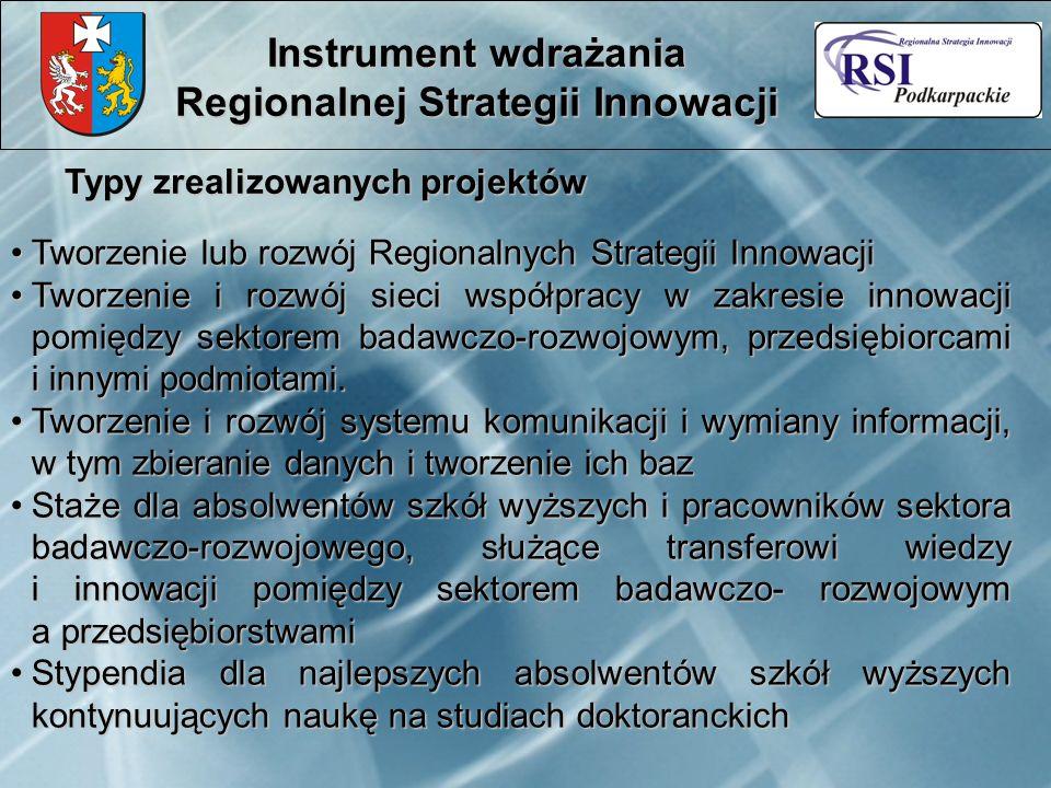 Typy zrealizowanych projektów Instrument wdrażania Regionalnej Strategii Innowacji Tworzenie lub rozwój Regionalnych Strategii InnowacjiTworzenie lub