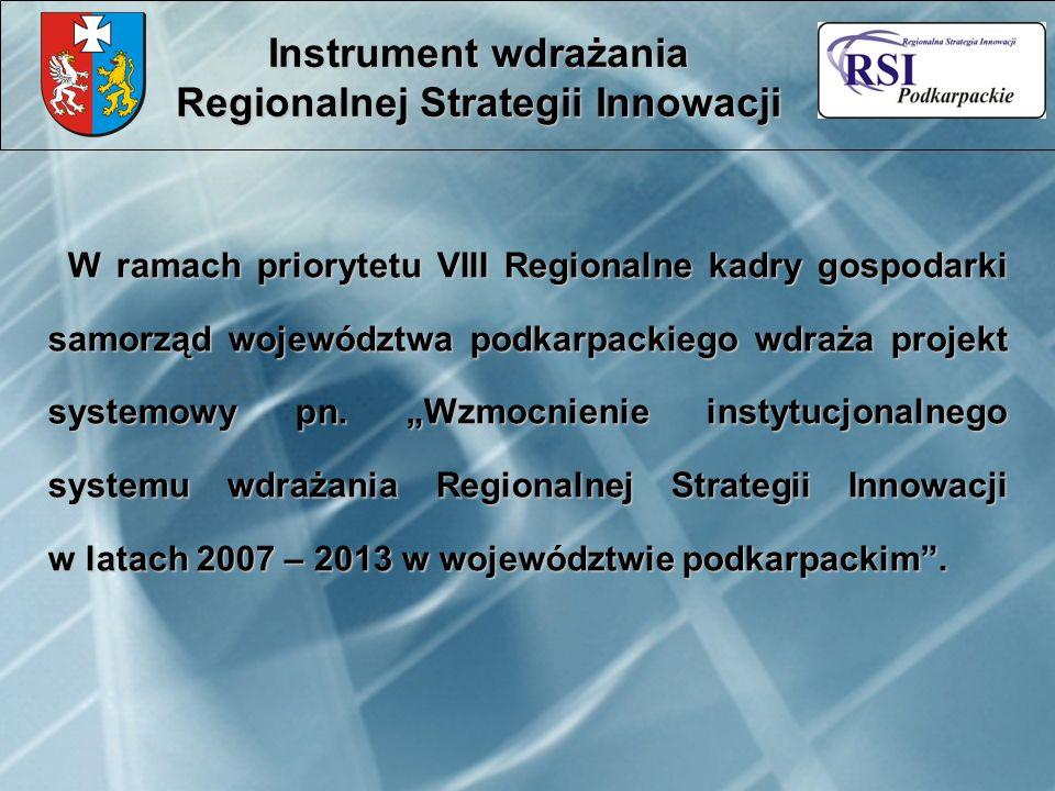 W ramach priorytetu VIII Regionalne kadry gospodarki samorząd województwa podkarpackiego wdraża projekt systemowy pn. Wzmocnienie instytucjonalnego sy