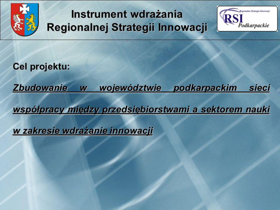 Cel projektu: Zbudowanie w województwie podkarpackim sieci współpracy między przedsiębiorstwami a sektorem nauki w zakresie wdrażanie innowacji Instru