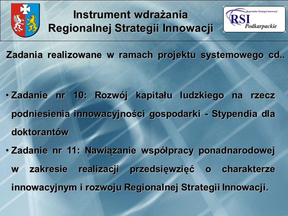 Zadania realizowane w ramach projektu systemowego cd.. Instrument wdrażania Regionalnej Strategii Innowacji Zadanie nr 10: Rozwój kapitału ludzkiego n
