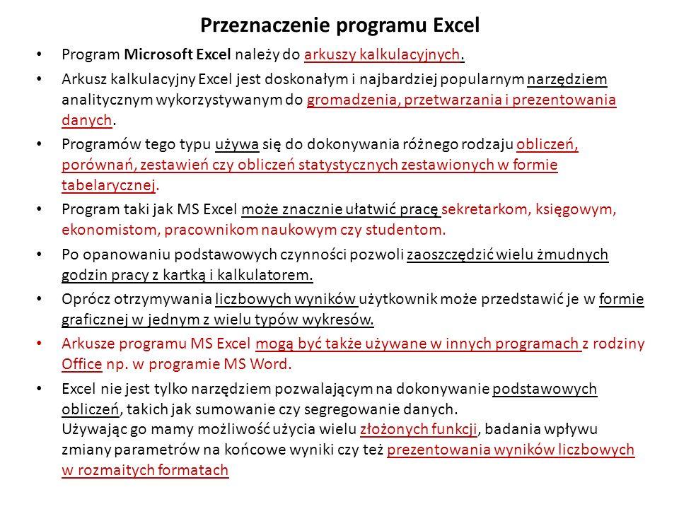 Excel – przeznaczenie c.d.