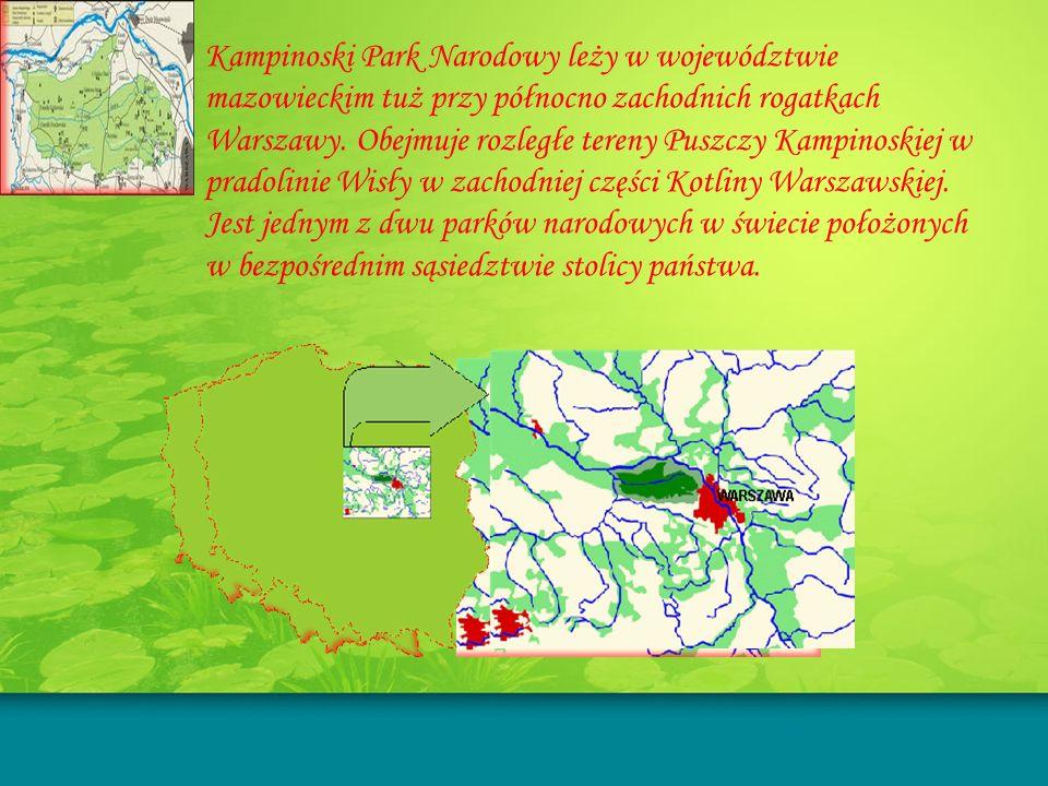 Kampinoski Park Narodowy leży w województwie mazowieckim tuż przy północno zachodnich rogatkach Warszawy. Obejmuje rozległe tereny Puszczy Kampinoskie