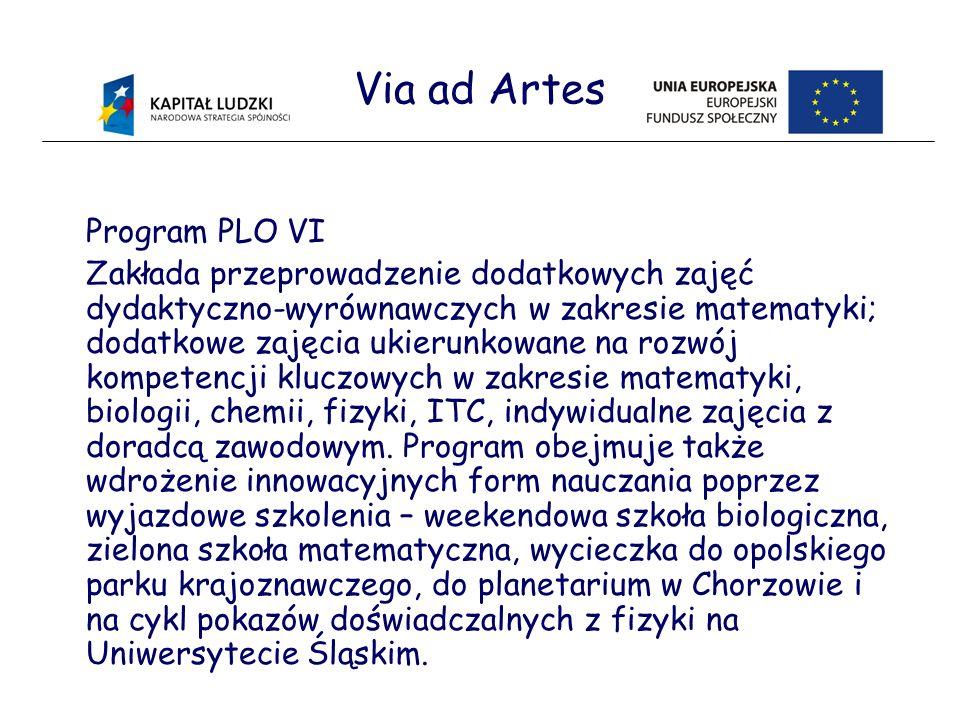 Via ad Artes Program PLO VI Zakłada przeprowadzenie dodatkowych zajęć dydaktyczno-wyrównawczych w zakresie matematyki; dodatkowe zajęcia ukierunkowane na rozwój kompetencji kluczowych w zakresie matematyki, biologii, chemii, fizyki, ITC, indywidualne zajęcia z doradcą zawodowym.