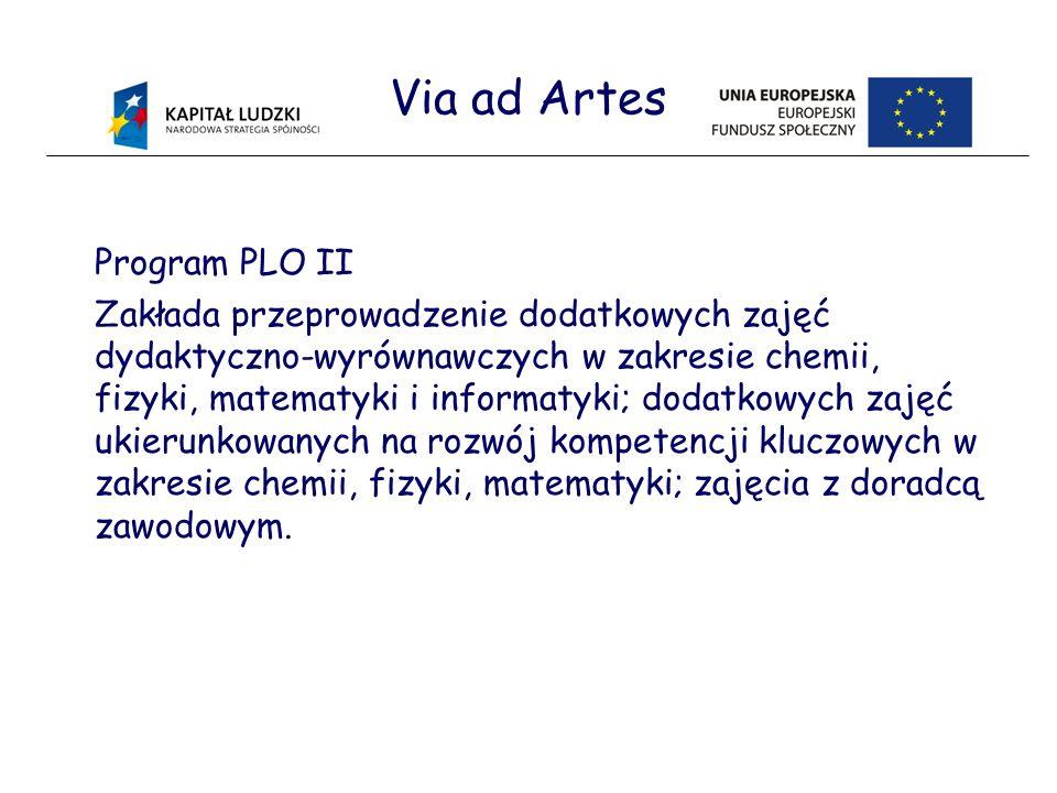 Via ad Artes Program PLO II Zakłada przeprowadzenie dodatkowych zajęć dydaktyczno-wyrównawczych w zakresie chemii, fizyki, matematyki i informatyki; dodatkowych zajęć ukierunkowanych na rozwój kompetencji kluczowych w zakresie chemii, fizyki, matematyki; zajęcia z doradcą zawodowym.