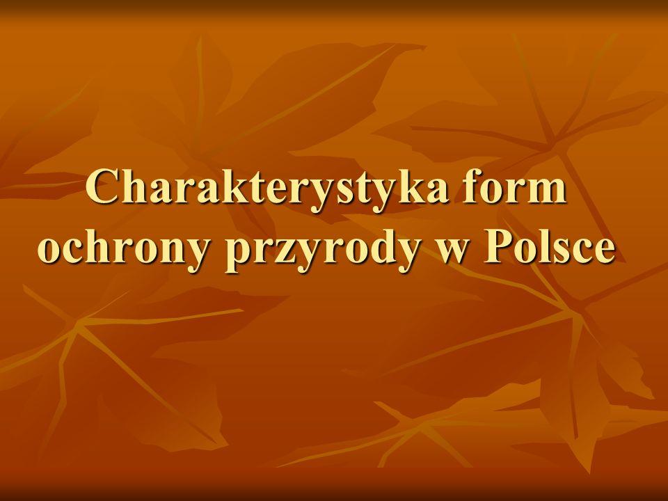 Charakterystyka form ochrony przyrody w Polsce