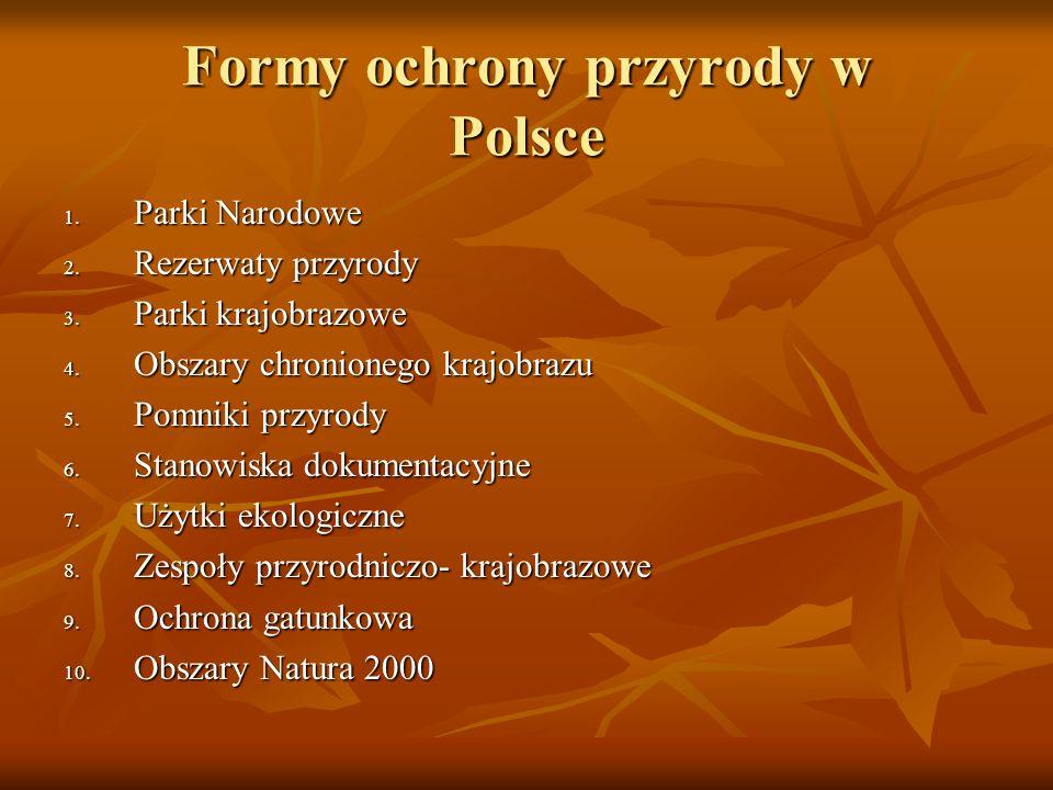 Formy ochrony przyrody w Polsce 1. Parki Narodowe 2. Rezerwaty przyrody 3. Parki krajobrazowe 4. Obszary chronionego krajobrazu 5. Pomniki przyrody 6.