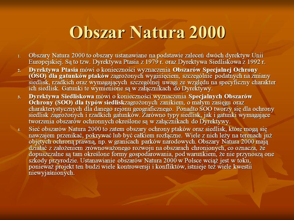 Obszar Natura 2000 1. Obszary Natura 2000 to obszary ustanawiane na podstawie zaleceń dwóch dyrektyw Unii Europejskiej. Są to tzw. Dyrektywa Ptasia z