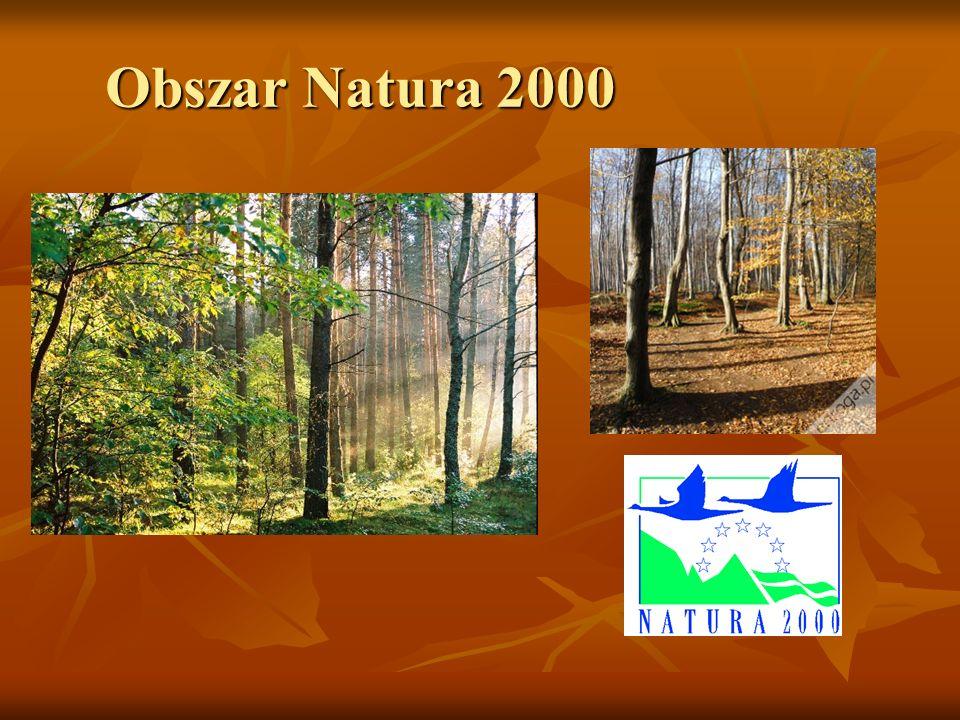 Obszar Natura 2000