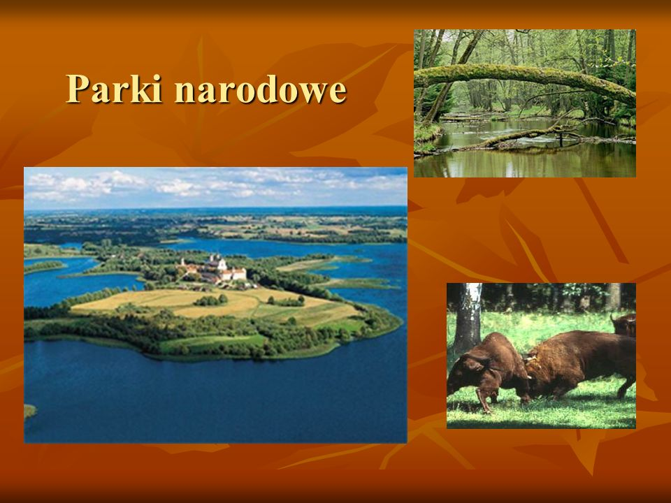 Parki narodowe