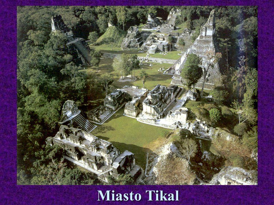 Miasto Tikal