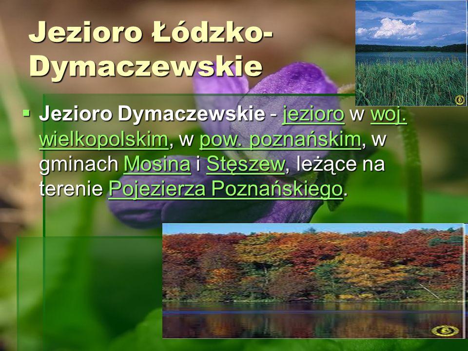 Jezioro Łódzko- Dymaczewskie Jezioro Dymaczewskie - jezioro w woj. wielkopolskim, w pow. poznańskim, w gminach Mosina i Stęszew, leżące na terenie Poj