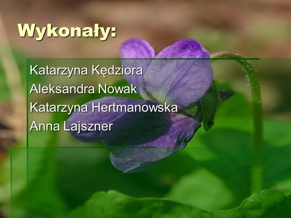 Wykonały: Katarzyna Kędziora Aleksandra Nowak Katarzyna Hertmanowska Anna Lajszner
