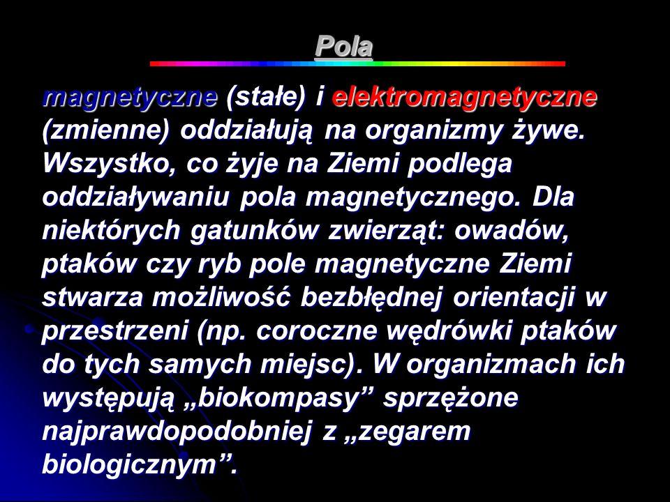 Pola magnetyczne (stałe) i elektromagnetyczne (zmienne) oddziałują na organizmy żywe. Wszystko, co żyje na Ziemi podlega oddziaływaniu pola magnetyczn