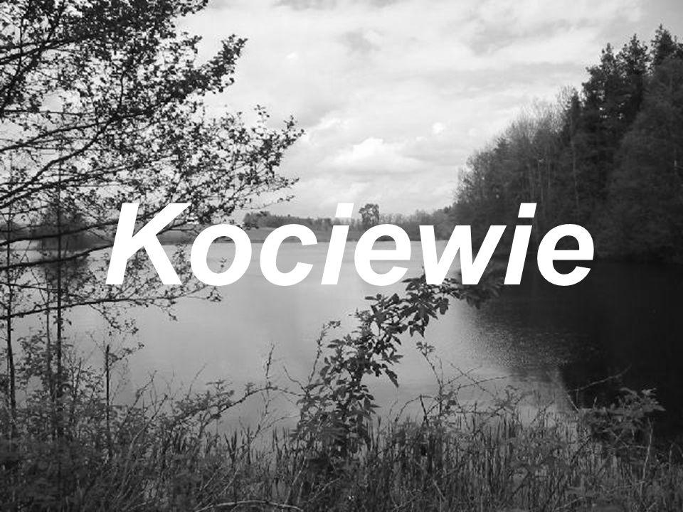 1 września 1939 - inwazja Niemiec na Polskę, wysadzenie mostów w Tczewie 2 września 1939 - wkroczenie wojsk niemieckich do Tczewa, Starogardu, Gniewa 12/13 września 1939 - pierwszy mord masowy 10 starogardzian w Lesie Szpęgawskim, w miejscu wymordowania 5-7 tys.