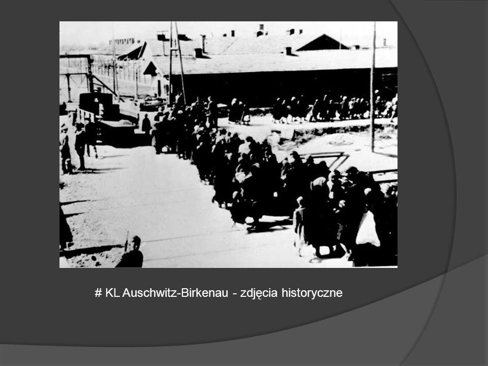 # KL Auschwitz-Birkenau - zdjęcia historyczne
