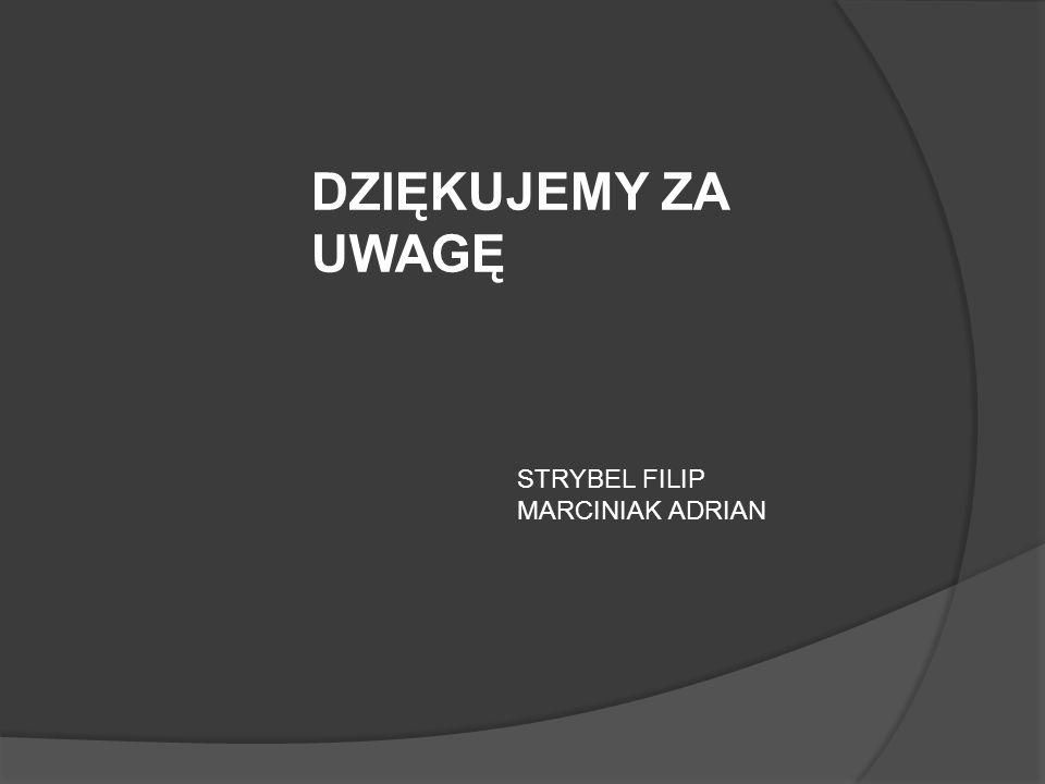 DZIĘKUJEMY ZA UWAGĘ STRYBEL FILIP MARCINIAK ADRIAN