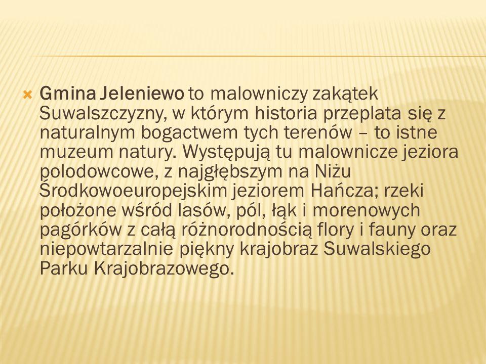 Gmina Jeleniewo to malowniczy zakątek Suwalszczyzny, w którym historia przeplata się z naturalnym bogactwem tych terenów – to istne muzeum natury. Wys