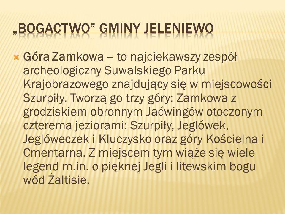 Góra Zamkowa – to najciekawszy zespół archeologiczny Suwalskiego Parku Krajobrazowego znajdujący się w miejscowości Szurpiły. Tworzą go trzy góry: Zam