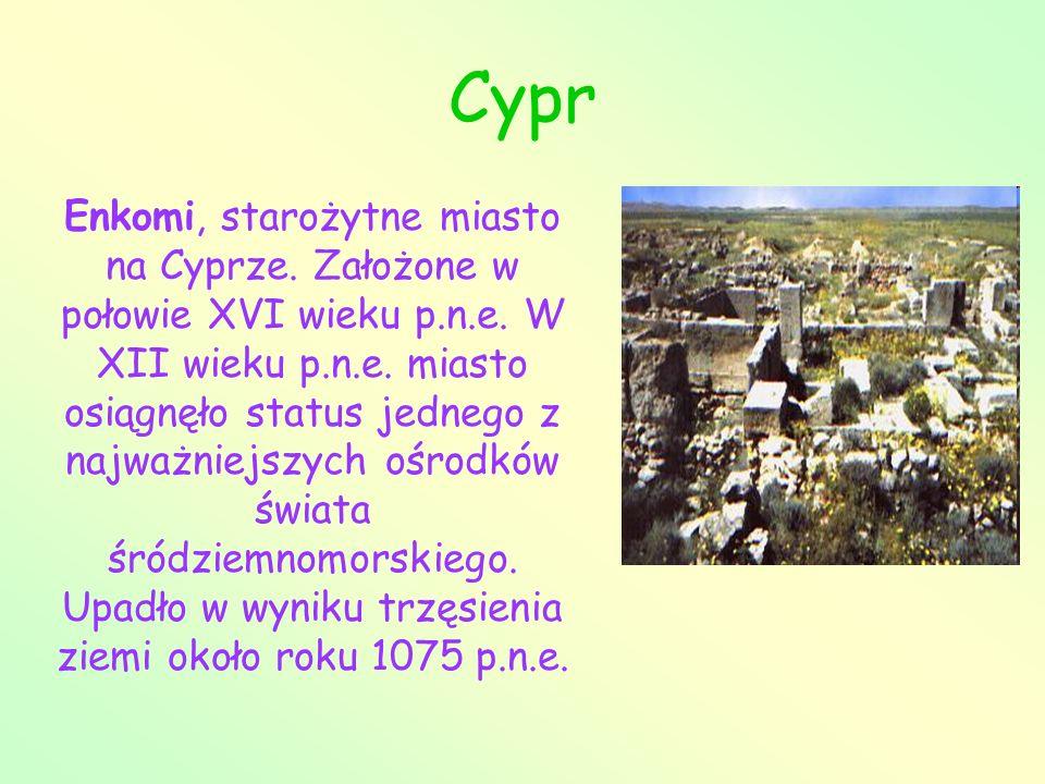 Cypr Enkomi, starożytne miasto na Cyprze. Założone w połowie XVI wieku p.n.e. W XII wieku p.n.e. miasto osiągnęło status jednego z najważniejszych ośr