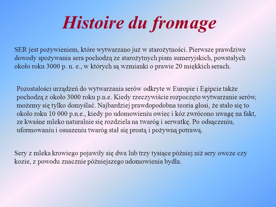 Histoire du fromage SER jest pożywieniem, które wytwarzano już w starożytności. Pierwsze prawdziwe dowody spożywania sera pochodzą ze starożytnych pis