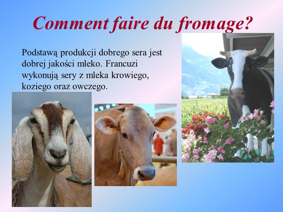 Comment faire du fromage? Podstawą produkcji dobrego sera jest dobrej jakości mleko. Francuzi wykonują sery z mleka krowiego, koziego oraz owczego.