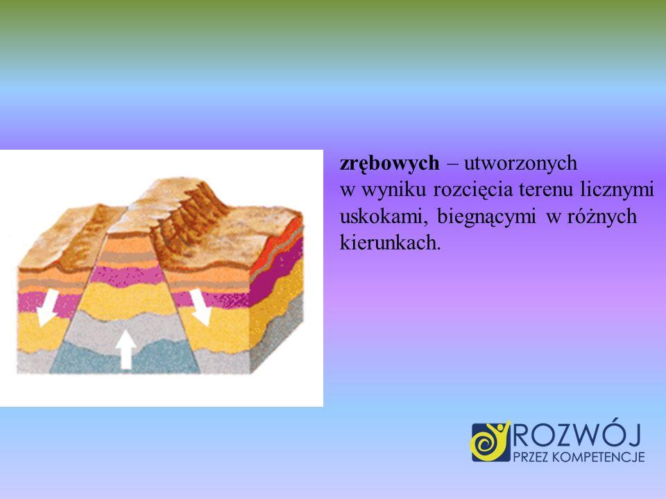 zrębowych – utworzonych w wyniku rozcięcia terenu licznymi uskokami, biegnącymi w różnych kierunkach.