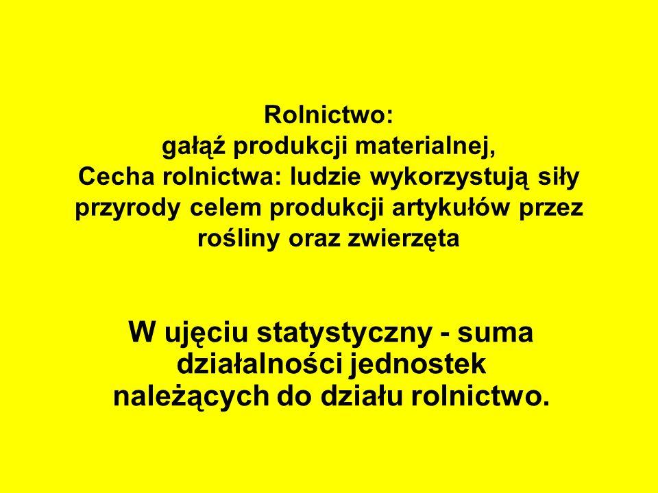 Inne funkcje rolnictwa i terenów wiejskich Teren powrotu do korzeni osób zmęczonych miastem Miejsce przechowywania wielu tradycji dawnej Polski, w tym tzw.