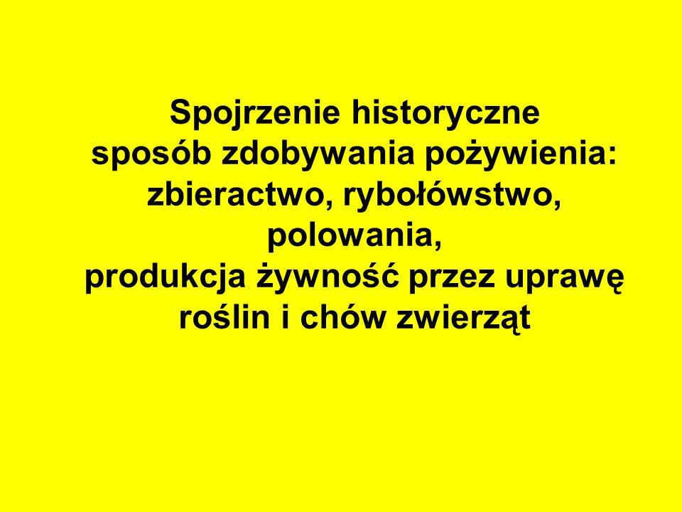 Inne funkcje rolnictwa i terenów wiejskich Ostatnie pozamuzealne miejsce przechowywania materialnej tradycji rolniczej Polski Pozarolnicze funkcje produkcyjne: energetyczne, artystyczne, przetwórstwa przydomowego, usługowe, w tym sprzedaż usług turystycznych i agroturystycznych itd.